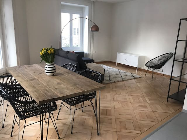 large and modern apartment in the heart of Zurich!