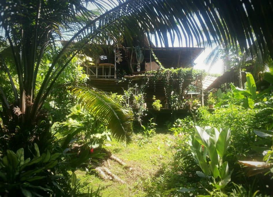 El jardin tortuga cabinas caba as en la naturaleza en for Cabanas de jardin