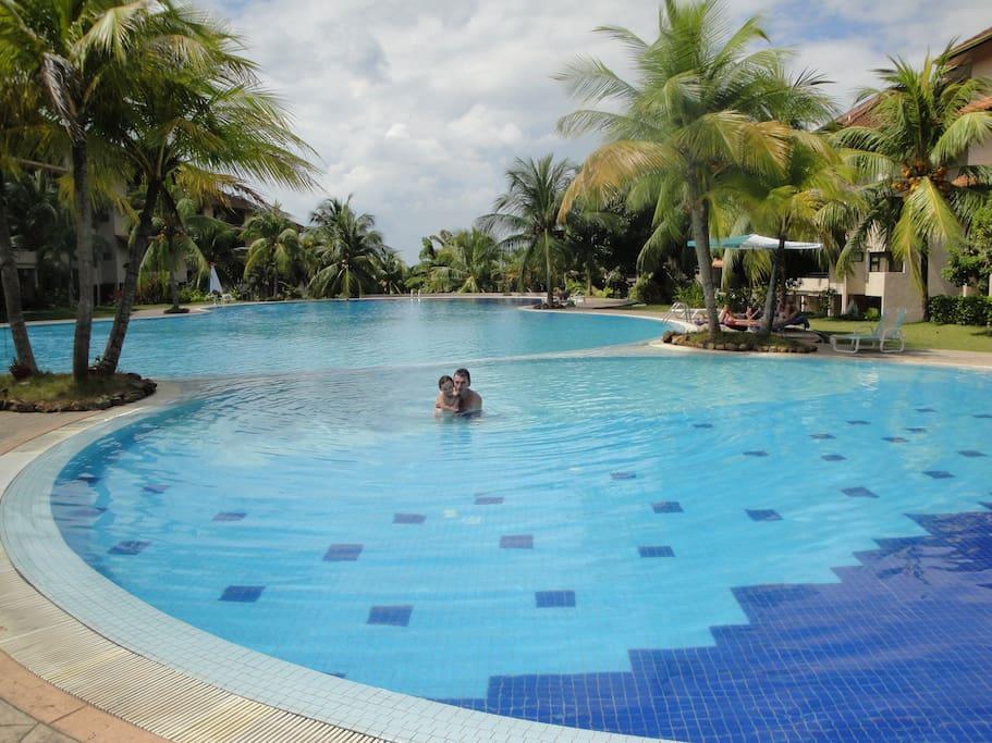 Amazing huge pool