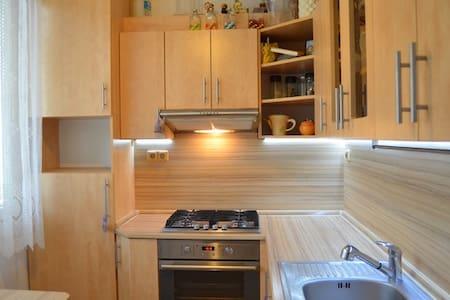 2 bedroom flat in a quiet spot of Frýdek-Místek
