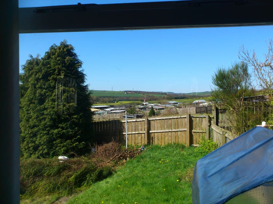 The view from the living room onto the garden