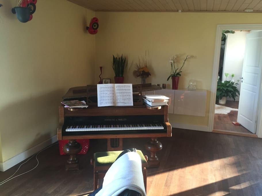 Living room – my grand piano which I love.