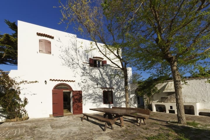 Villa Verde / I Palmenti - Ventotene - Casa de camp