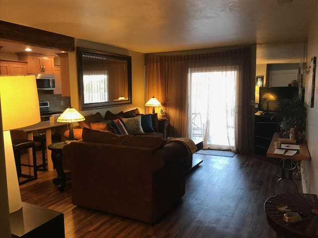 Beautiful 2BD Condo in Murray