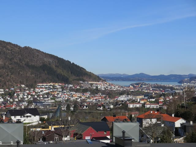 Apartment,beautiful view of Bergen
