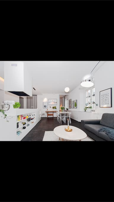 Social apartment with kitchen and living room in open-plan