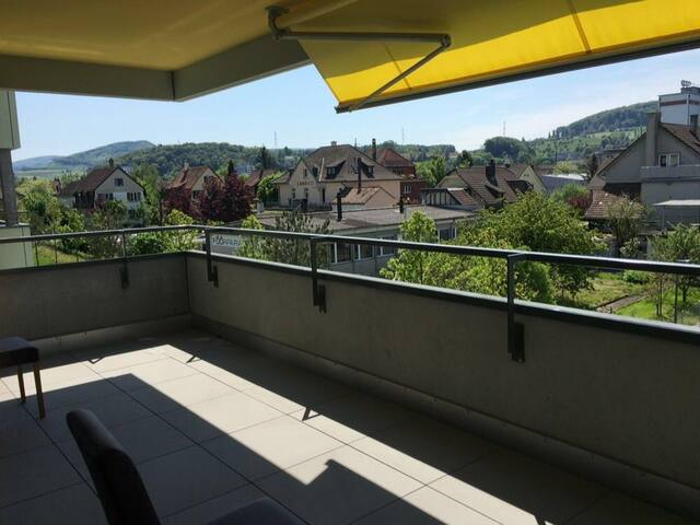 Modern Apartment 10 min from Basel - Pratteln - Daire