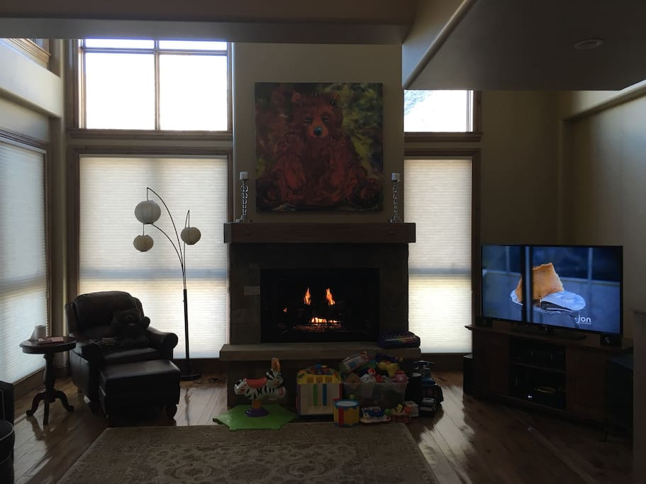 Living room with fireplace. Internet access