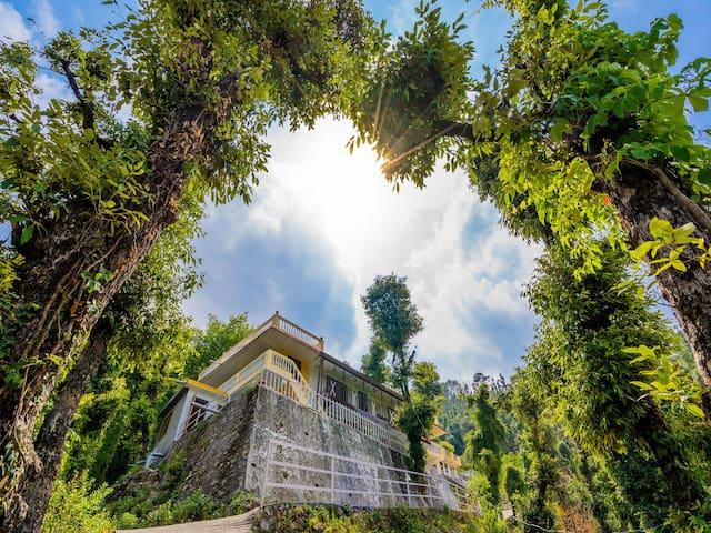 OYO - Sale Alert ⚠ - 1 BHK Abode Near Kempty Falls in Mussoorie