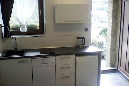 Studio apartment with kitchen + private bathroom