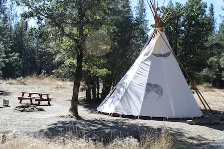 Beautiful 18' Wolf TiPi (TP4)