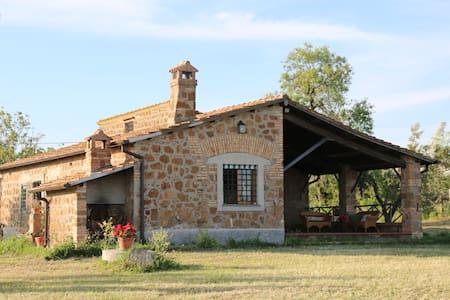 Maison de campagne  - mèr et Rome - Cerveteri - Dům