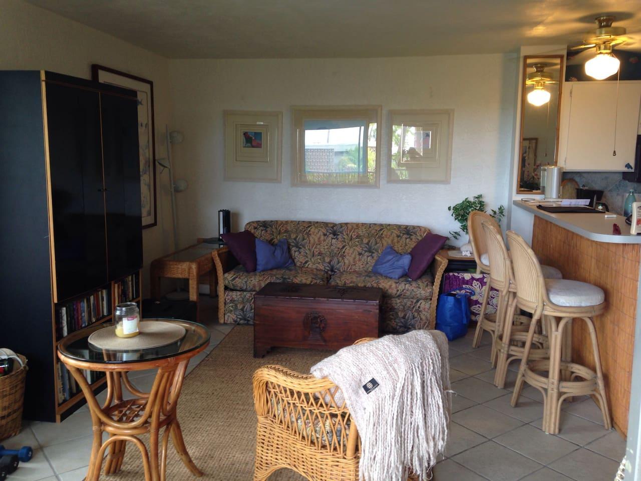 Comfortable living area!