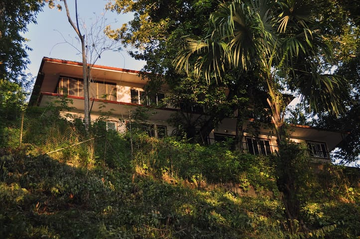 River Wildlife Sanctuary - Jungle At Your Doorstep - Teakettle - Bed & Breakfast