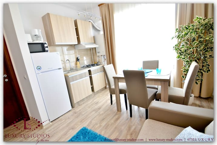 Kitchen facilities include a fridge, cooking machine, central heating with sensor for adjusting the temperature, washing machine, coffee machine, toaster, microwave, juice maker, sandwich maker, professional vacuum cleaner, clothes dryer, cutlery and glas