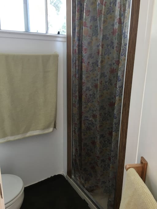 Clean private shower and toilet