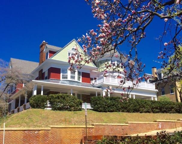 Victorian Luxury in the Shenandoah! - Staunton - Bed & Breakfast