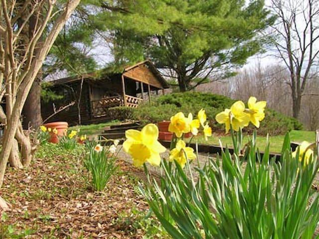 Romantic hudson valley log cabin cottages for rent in for Hudson log
