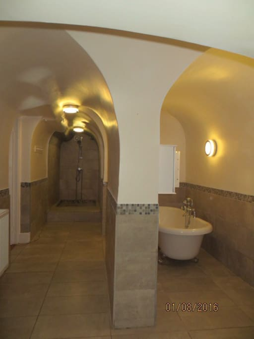 Amazing vaulted ceiling bathroom with large walk in shower , freestanding bath, bidet , basin and loo