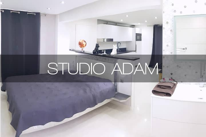 STUDIO ADAM (Std)
