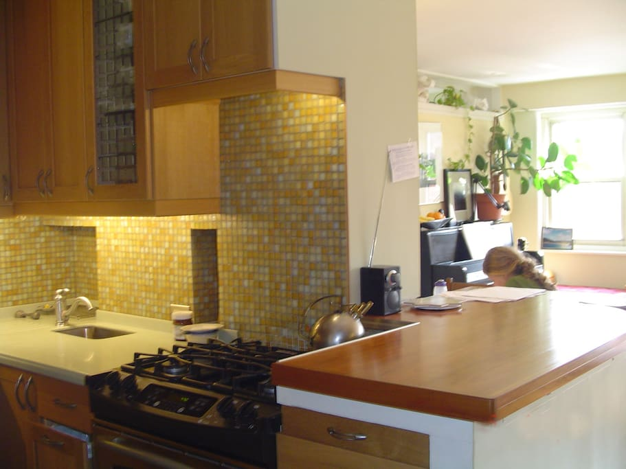 Kitchen: 2 sinks and built-in storage, with sliding breakfast counter