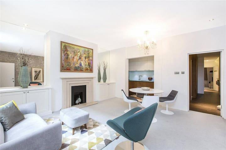 Amazing 2 Bedroom flat in Victoria and Westminster - Londen