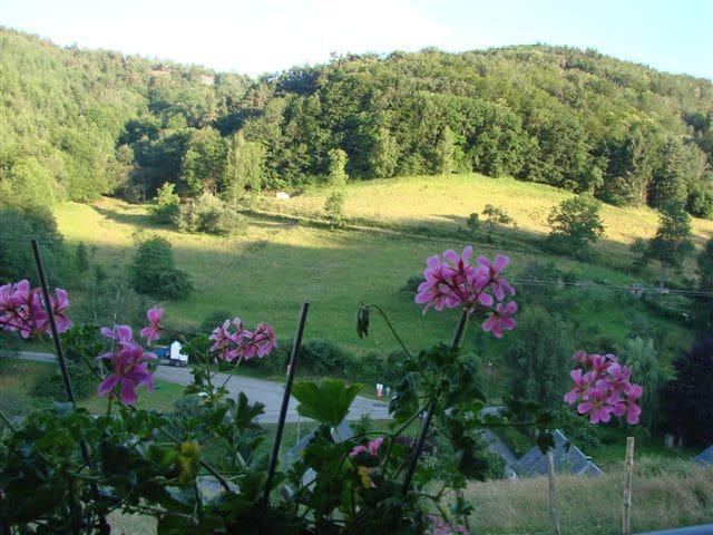 gite belle vue  à labaroche - Labaroche - Casa