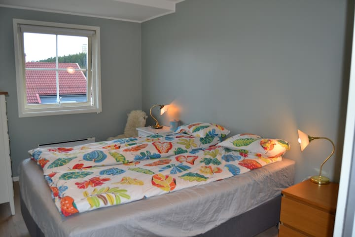 Room in cosy,big appartment 20 minutes to centrum.