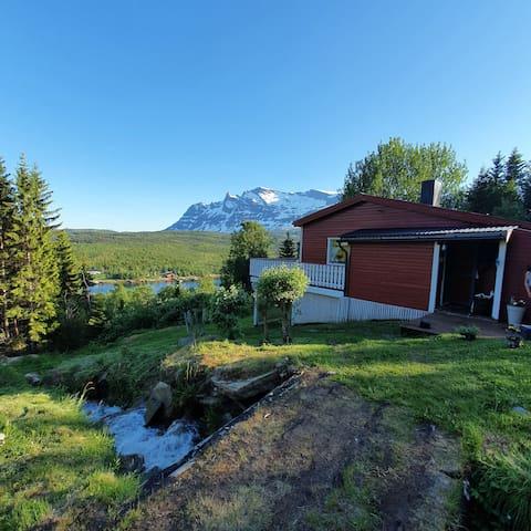 Koselig skogshytte med formidabel utsikt til leie