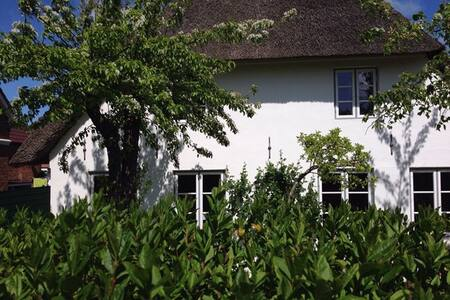 Tidehus unter Reet - Oevenum - House