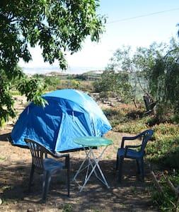 Camping location in our farm- Nijar - Níjar