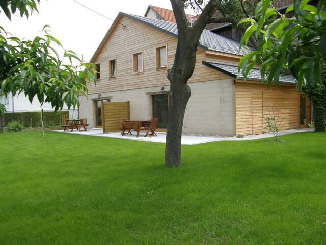 maison de 8 à 12 personnes - Bolsenheim - Huoneisto