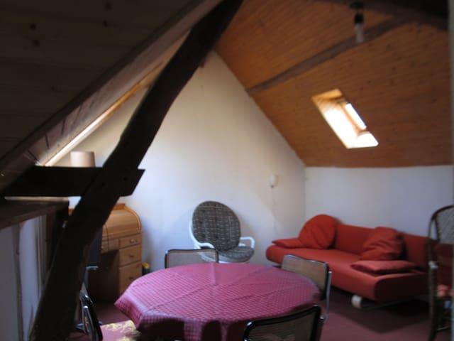 Appartement indépendant Beau cadre - La Chapelle-Saint-Aubin - Apartment