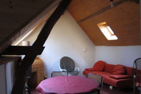 Appartement indépendant Beau cadre - La Chapelle-Saint-Aubin