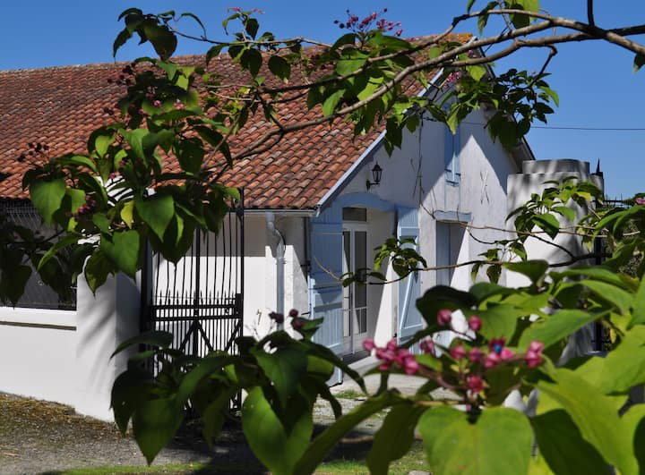 Charming 2 Bedroom Gîte in vineyard, sleeps 4/6