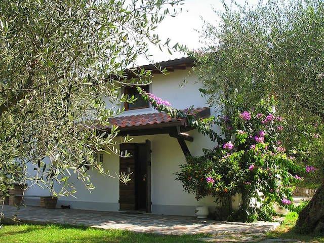 Villa in Uliveto  a 6km dal mare - Piano di Mommio