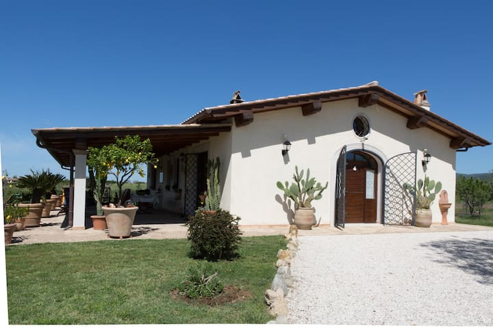 B&B Casa degli ulivi - Sunset - Cerveteri - Bed & Breakfast