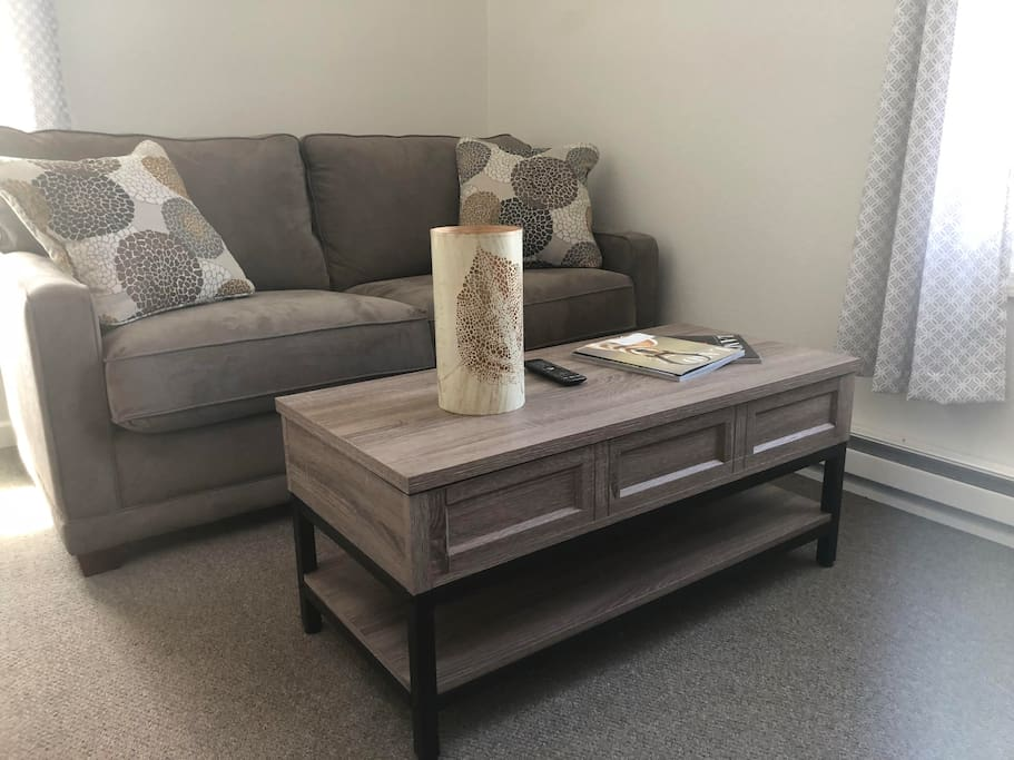 Sleeper Sofa and coffee table