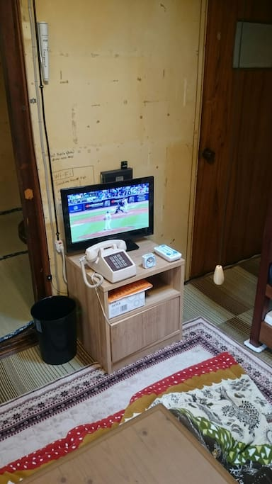 Wi-Fi, Fixed-line phone and Satellite broadcasting TV