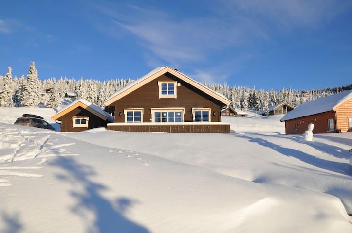 Nyoppført hytte på Sjusjøen - Sjusjøen - Kabin