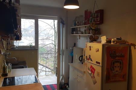 Helles 2 Z. Wohnung in ruhiger, zentraler Lage - Freiburg im Breisgau