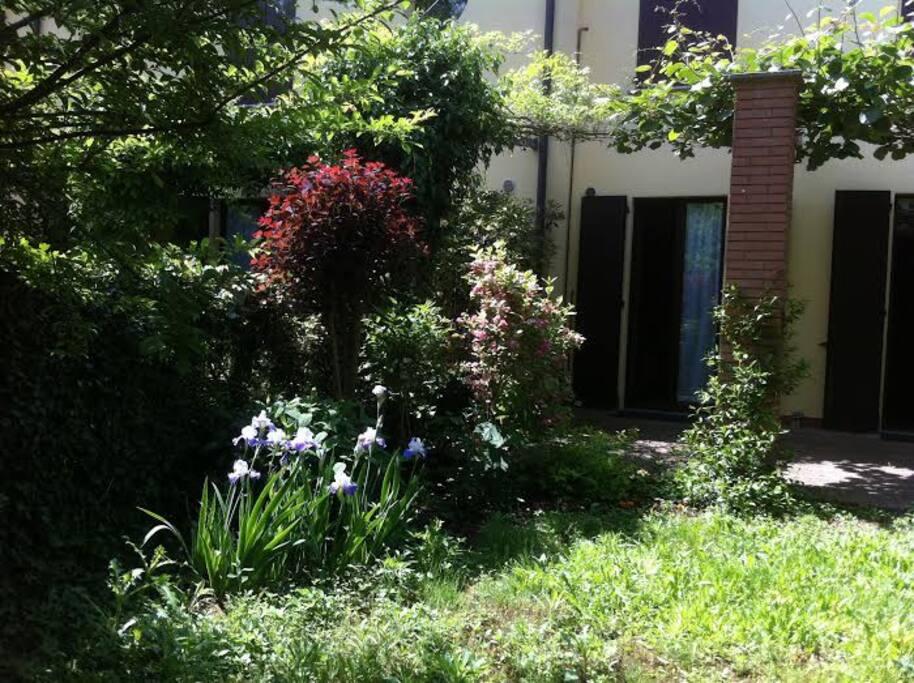 il giardino rigoglioso / the luxuriant garden