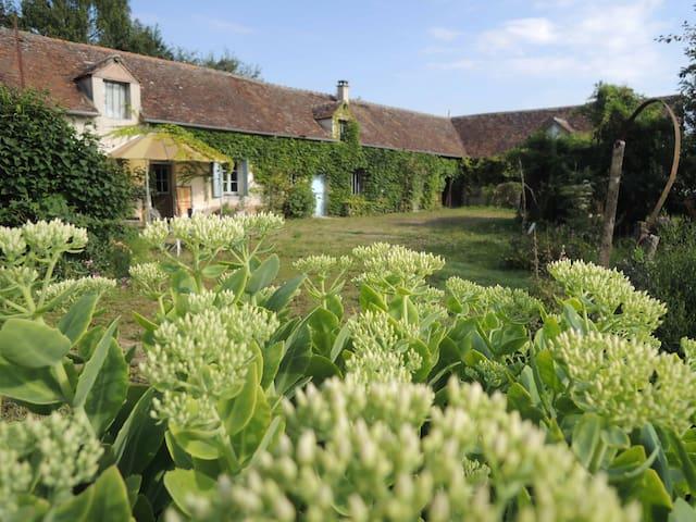La Maison dans les Champs du Loiret - Villemoutiers - Casa