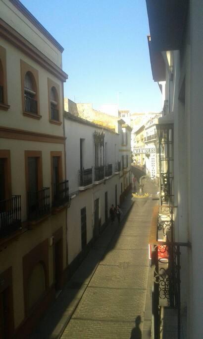 Calle San pablo en casco historico,junto a corredera.Zona tranquila para ir a pié a conocer lo mas emblemático de la ciudad.