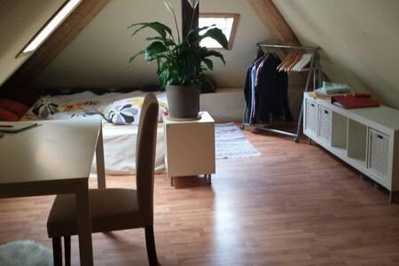 Sehr Zentrales WG Zimmer auf eigener Etage Nr. 3 - Konstanz - Apartamento