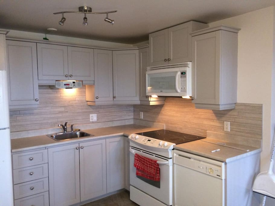 Newly renovated kitchen with dishwasher, microwave, stove and fridge