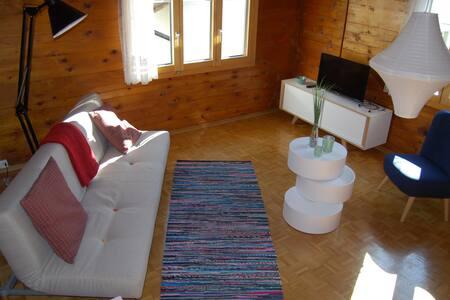 Schmucke Ferienwohnung ZUGMATTE - Visperterminen - アパート