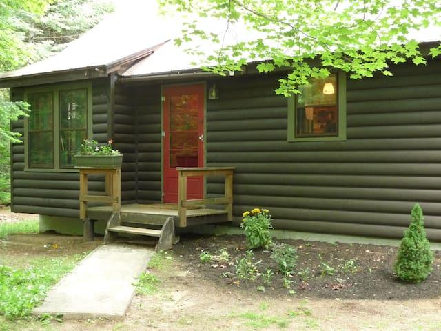 Pine Martin Cabin - Saranac Lake - Cottage