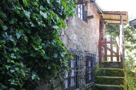 Lousã Mountain-Cottage in Nature - Casal Novo - Lousã - Villa