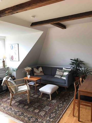 51 sqm. cozy apartment in Odense C